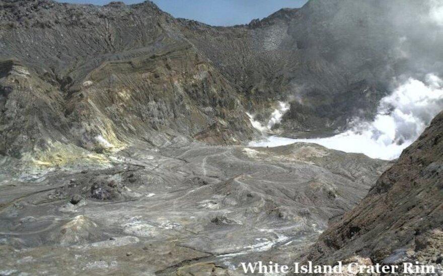 Tebesitęsiant paieškoms, Naujosios Zelandijos ugnikalnio išsiveržimo aukų padaugėjo iki 18