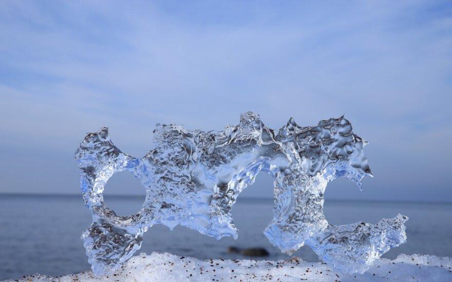 Ledo skulptūros pajūryje