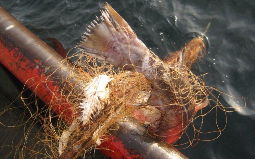 Iš Baltijos jūros traukiami seni žvejų tinklai