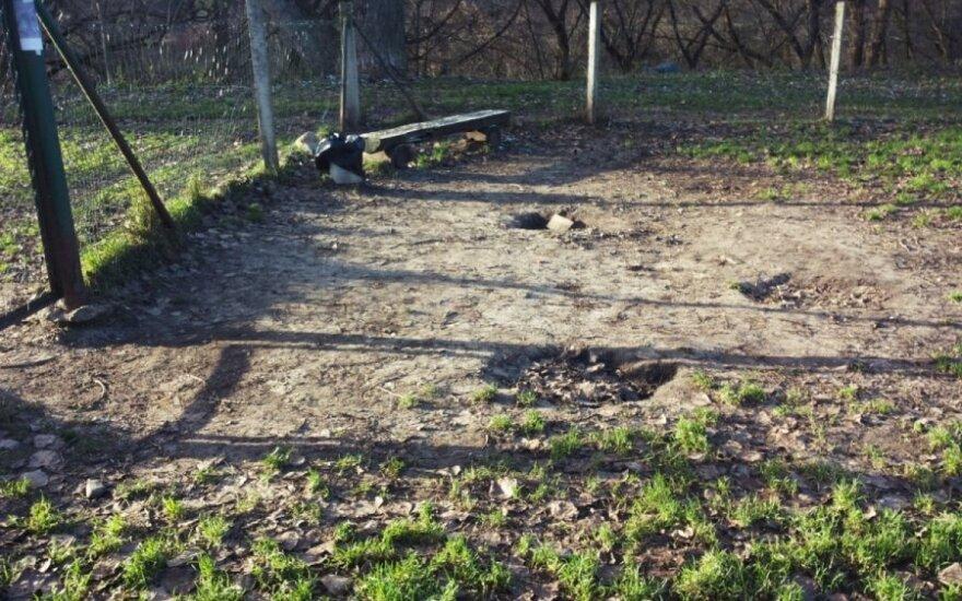 Šunų aikštelė Antakalnyje