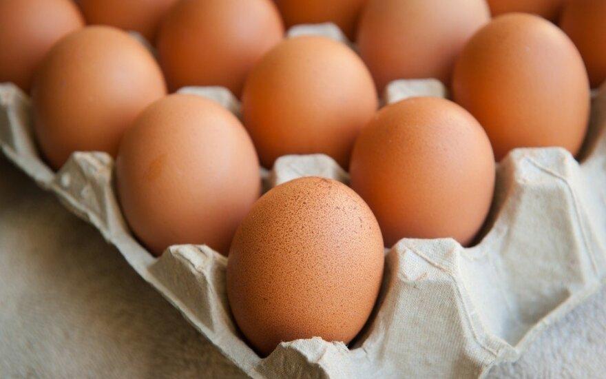Lietuviški kiaušiniai galės keliauti į Kanadą