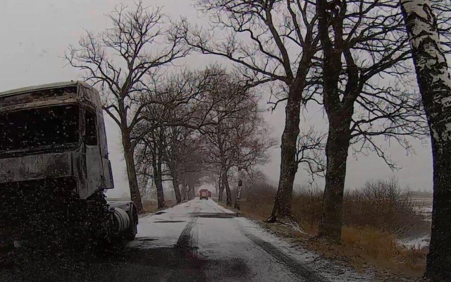 """Kelyje – sudegusio vilkiko """"griaučiai"""""""