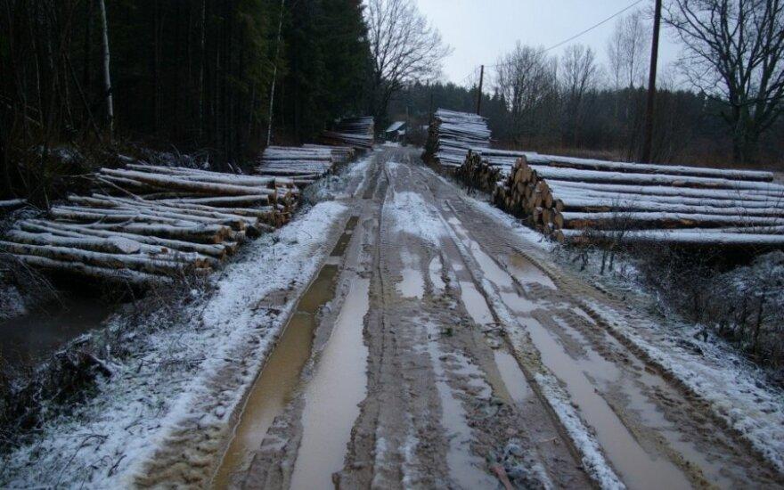 Miškininkai tikrino, ar legaliai kertamas miškas