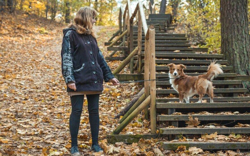 Šunį priglaudusiai merginai augintinis – kompanionas renginiuose