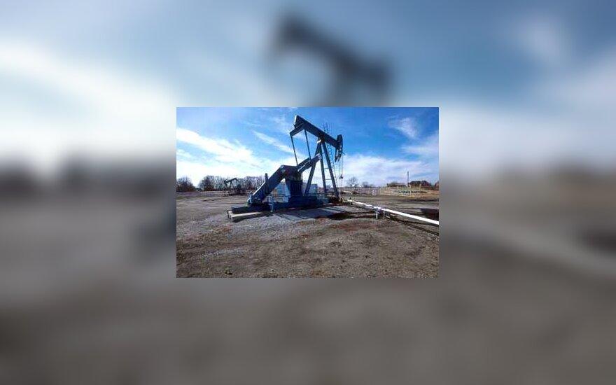 Petroleum oil drilling