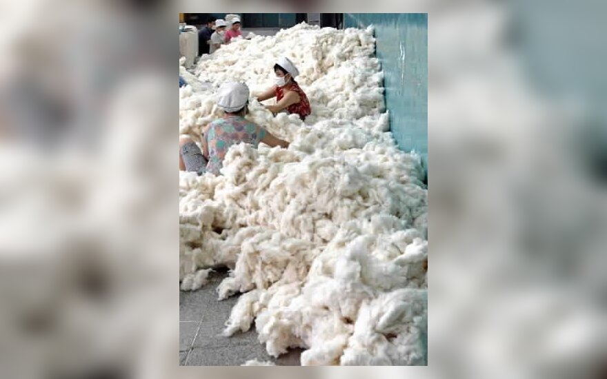 Kinų darbininkai tvarko medvilnę fabrike.