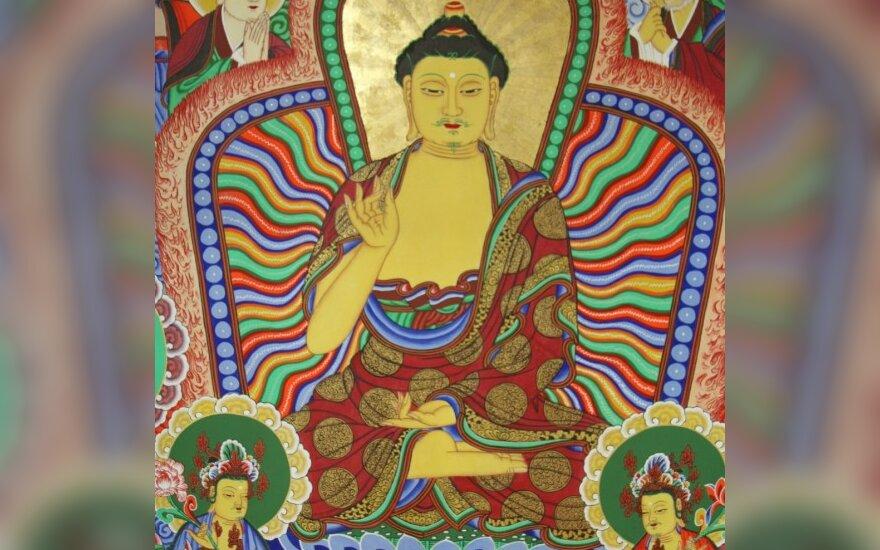 Budistinės tankos