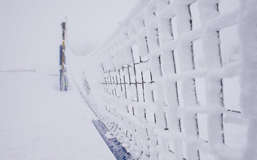 Sniego tinklinis (CEV nuotr.)