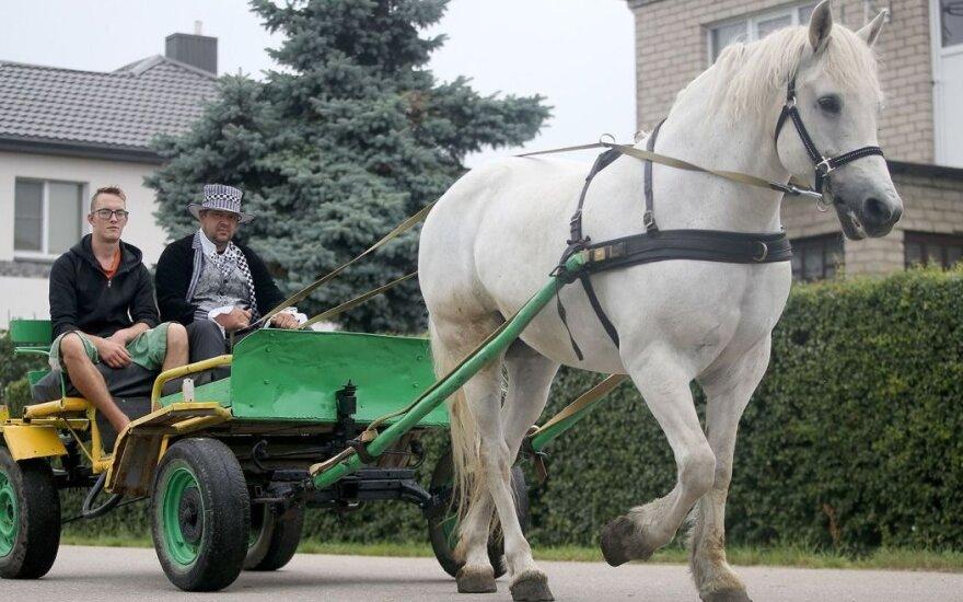 Originalu: kaimo Kėdainių rajone gyventojai važinės karieta