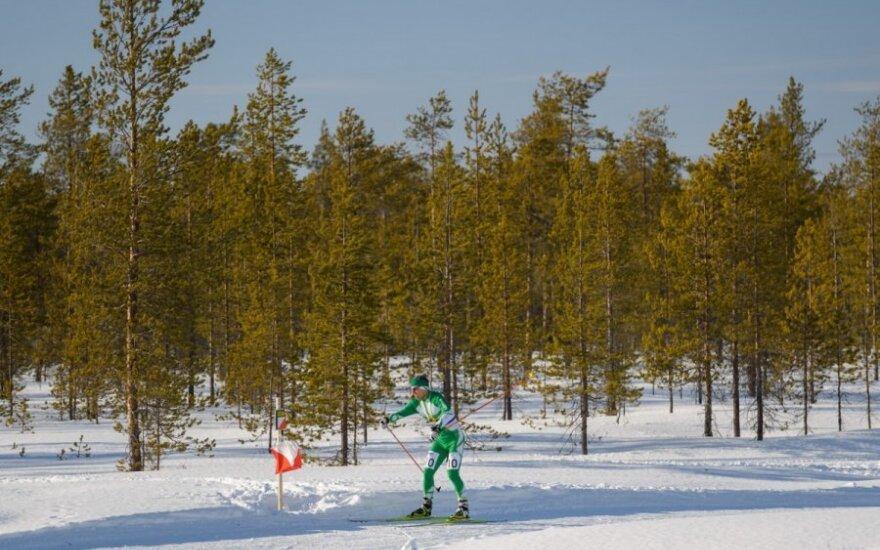 Nerijus Šulčys orientavimosi sporto slidėmis varžybose