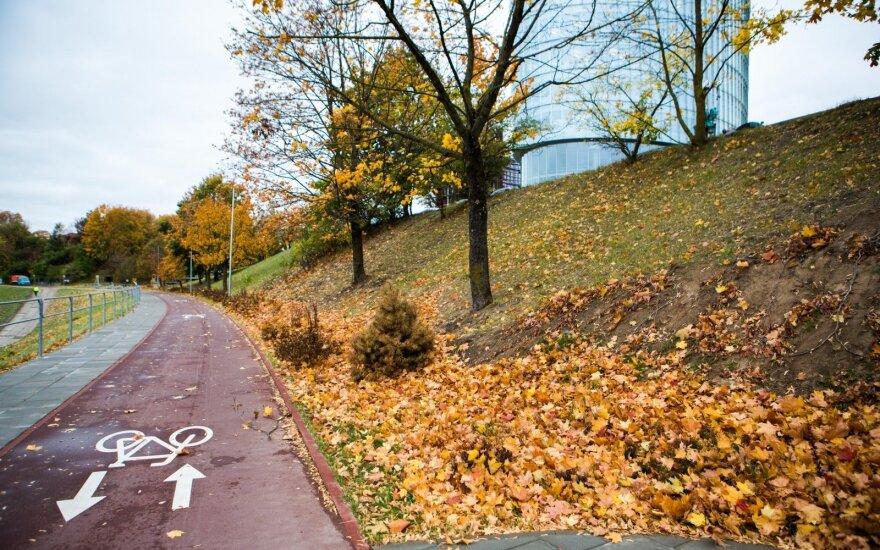 Didmiesčiai šiemet ruošiasi gerinti sąlygas dviratininkams