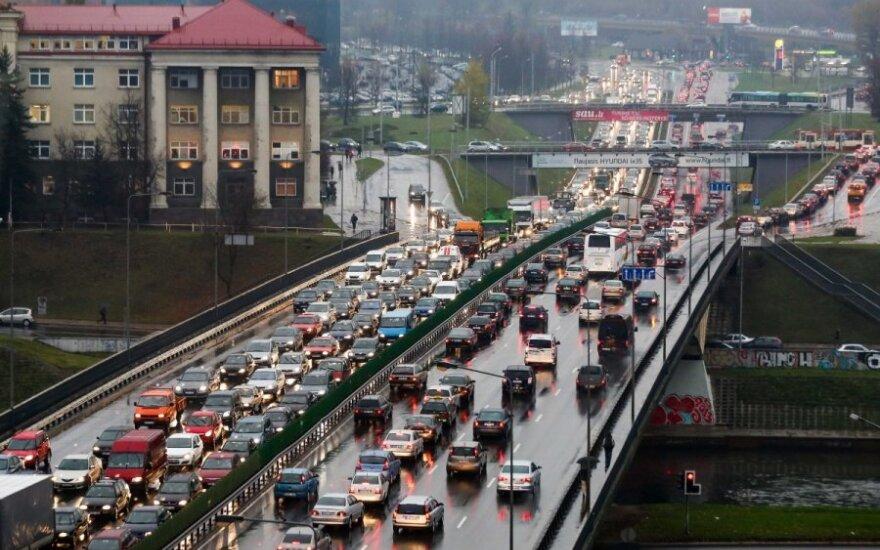 Vairuotojo nuomonė: ruduo – grybų metas ir jų pridygsta ne tik miškuose, bet ir keliuose