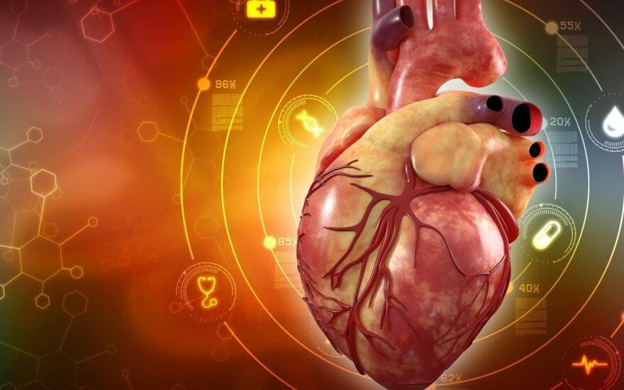 Kaip greitai galėsime atsispausdinti naują širdį?