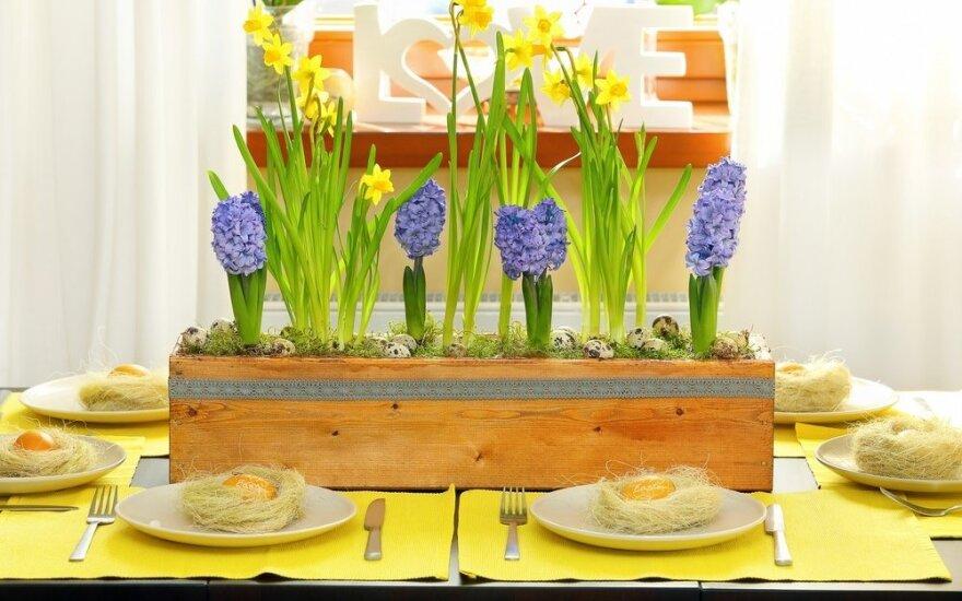 Tradicinis Velykų stalas: būtinas atributas – ne tik margučiai