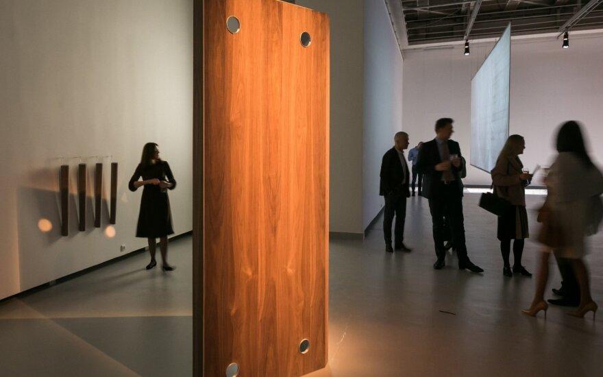 """Į """"Lėtos mokyklos. JCDecaux premija"""" pretenduoja penki jaunųjų menininkų kūriniai"""