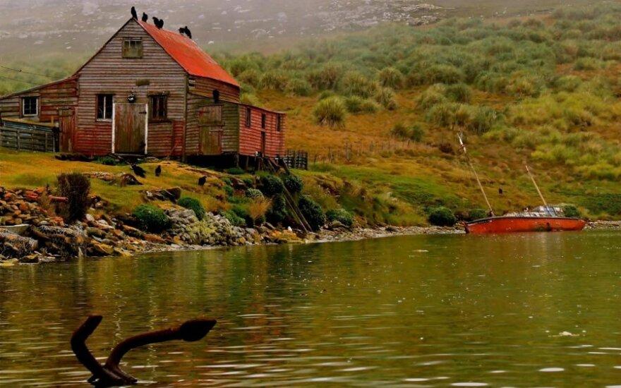 Folklando salyne