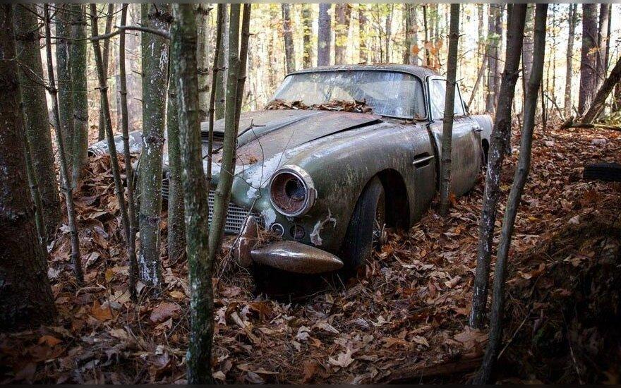 """Apleistas """"Aston Martin DB4"""" 45 metus išstovėjo miške"""