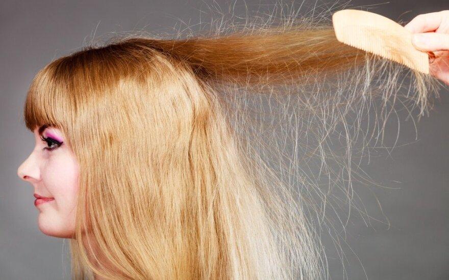"""Žiemos sezono """"dovana"""" – įsielektrinę plaukai. Kaip to išvengti?"""