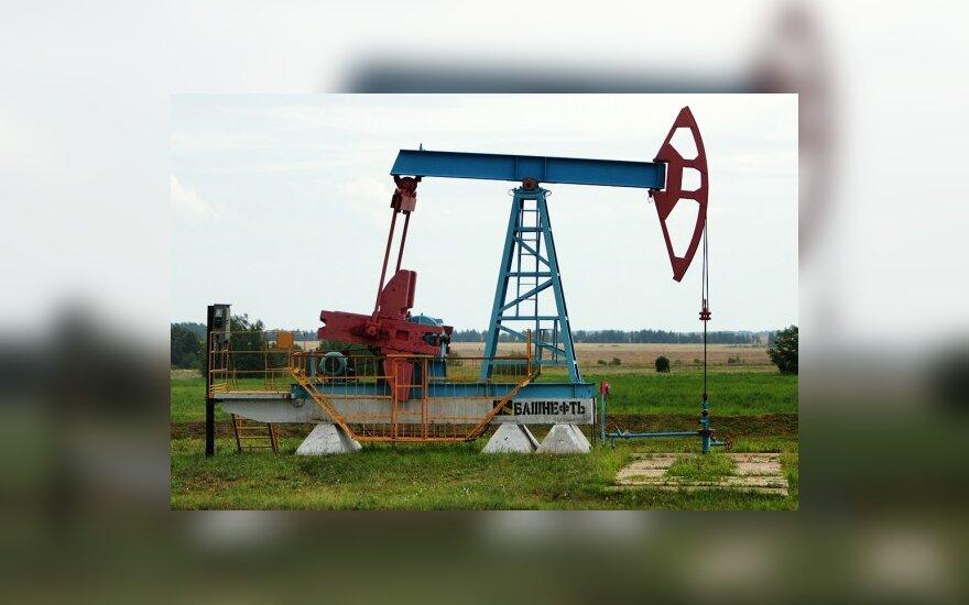 Naftininkai į Kintus nežengs