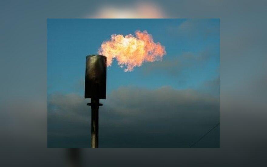 Naftos trūkumas gali sukelti pasaulinę krizę 2013 m.