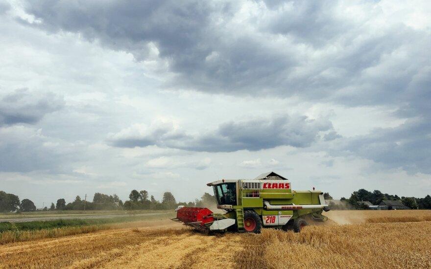 Geriausiai uždirbantiems ūkininkams jau neramu – mato tik vieną būdą išgyventi