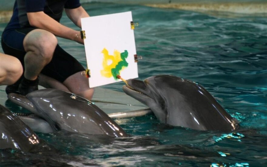 Delfinai piešė Lietuvos vėliavą