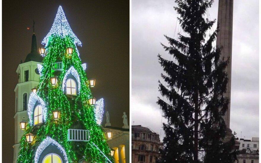Vilniaus ir Londono eglučių palyginimas prajuokino <em>feisbuką</em>