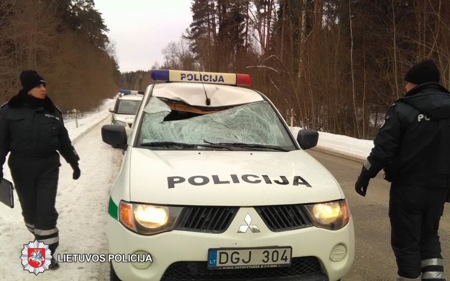 Rokiškio rajone pareigūnas tarnybiniu automobiliu partrenkė stirną