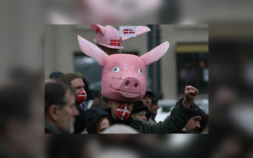 Prie Seimo susirinkę žmonės ragino parlamentarus nepavirsti kiaulėmis