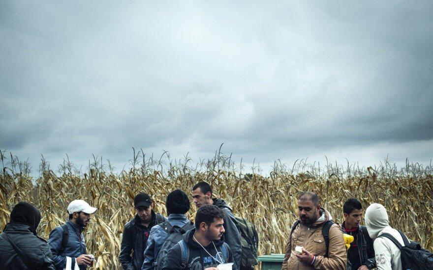 Pabėgėlių krizė atsisuks kitu kampu: netrukus Lietuva gali prašytis pagalbos