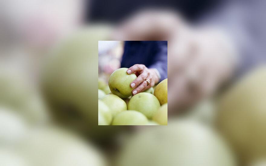 Parduotuvė, daržovės, vaisiai