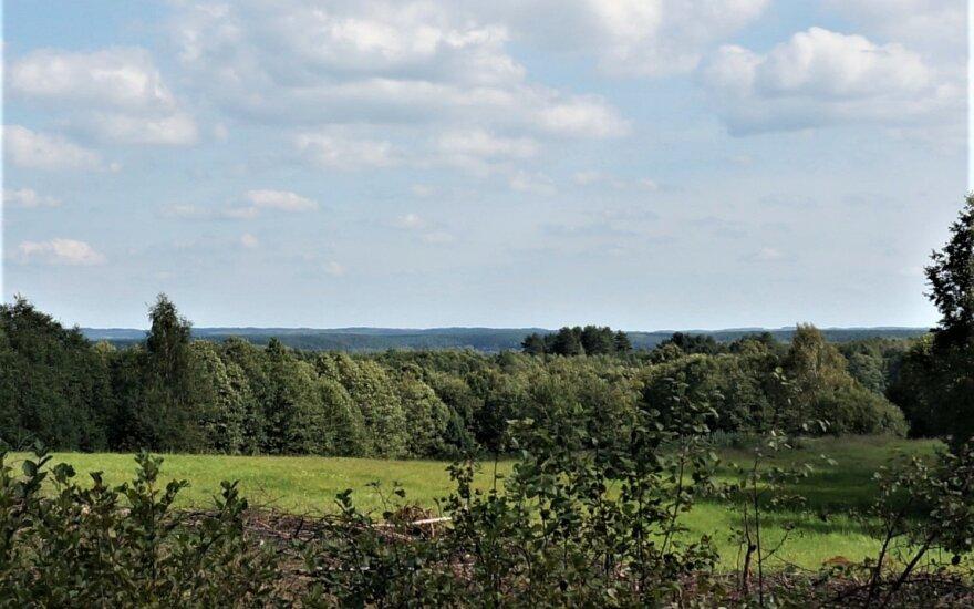 Tolumoje – Švenčionių (Šiaurės Nalšios) aukštumos vaizdas, matomas nuo rajoninio kelio Kirdeikiai – Antalksnė – Šakarva pasirinkto taško. Panašiai horizonto liniją iš šios vietos turėjo matyti mūsų pagoniški protėviai prieš tūkstantį ir daugiau metų // Autoriaus nuotr,
