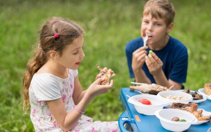 Ruošdamiesi pietums gamtoje geriau rinkitės popierinius vienkartinius indus
