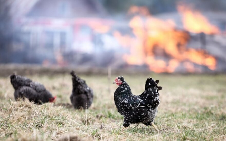 Ekspertai: 43 mln. Lt kainavusi gaisrų prevencijos sistema į ugnį ir dūmus nereaguoja
