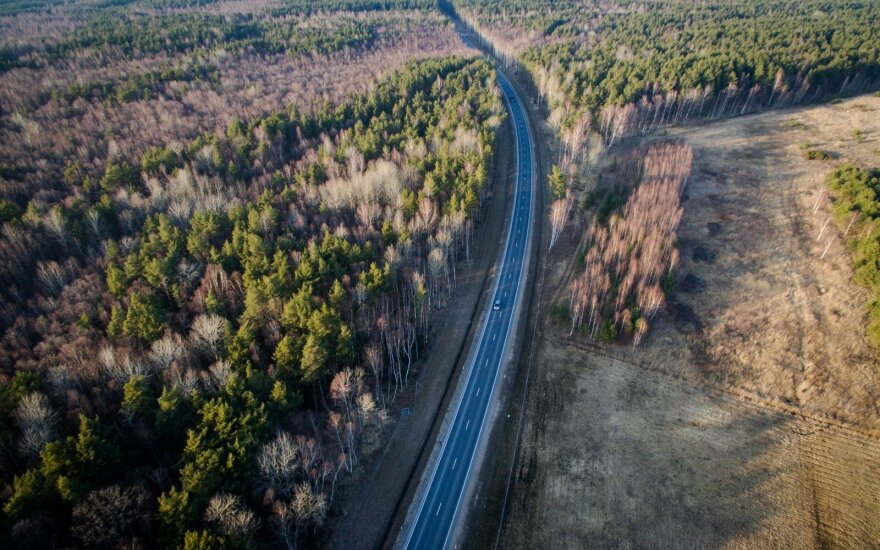 Laikinasis Valstybinių miškų urėdijos vadovas neatmeta galimybės likti