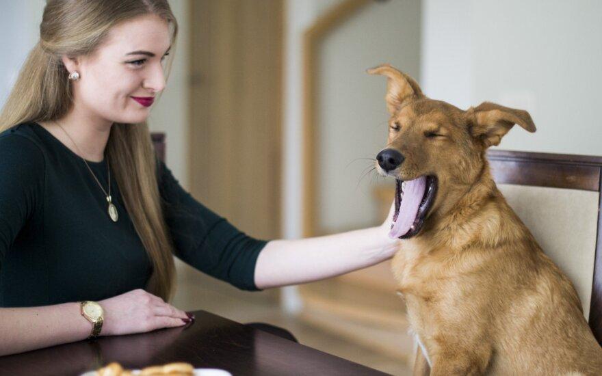 Namuose apsigyvenęs šuo turi juokingą pomėgį