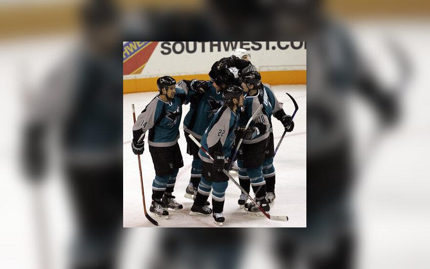 """""""San Jose Sharks"""" ledo ritulininkai"""