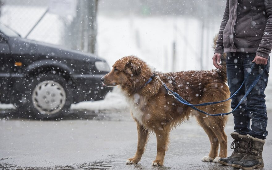 Orų prognozėse – tikras kritulių kokteilis: sniegas maišysis su šlapdriba ir lietumi