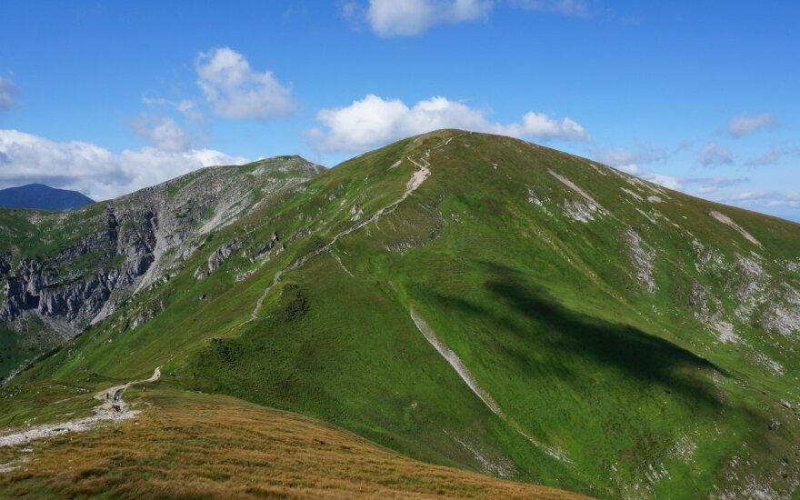 Tartų kalnai