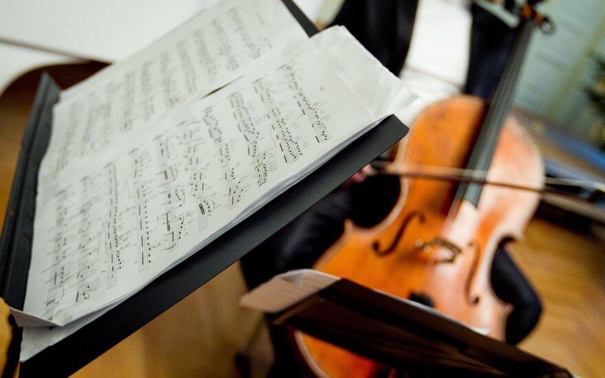 Vilniaus senamiestyje iš automobilio pavogta labai brangi violončelė