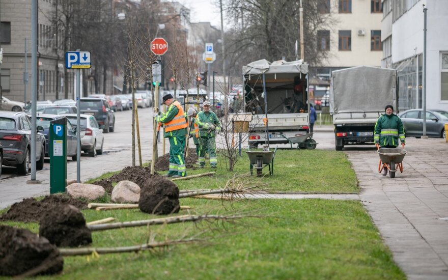 Šį pavasarį Vilniuje sodinama daugiau kaip 1000 medžių