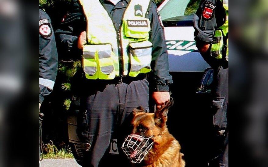 Policijos tarnybinis šuo Čipas Grizlis