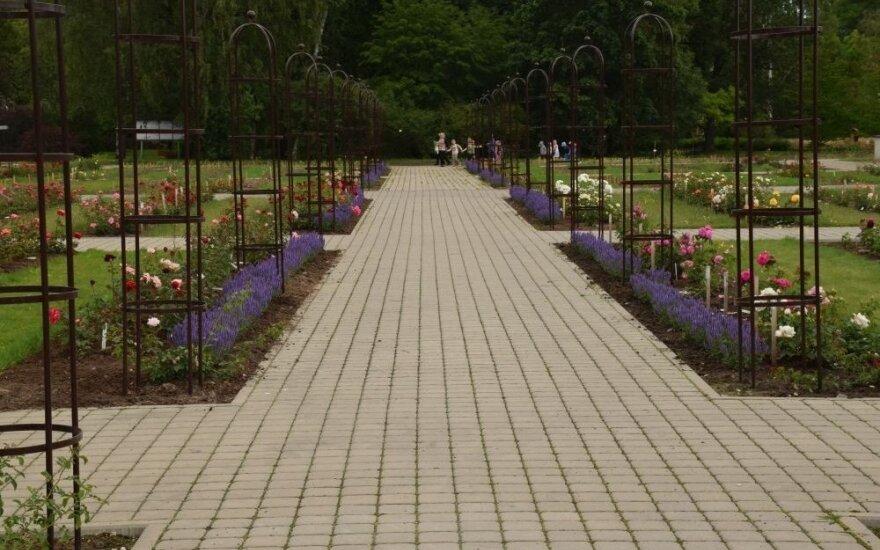 "VDU botanikos sode - festivalio ""Kaunas Photo"" paroda"