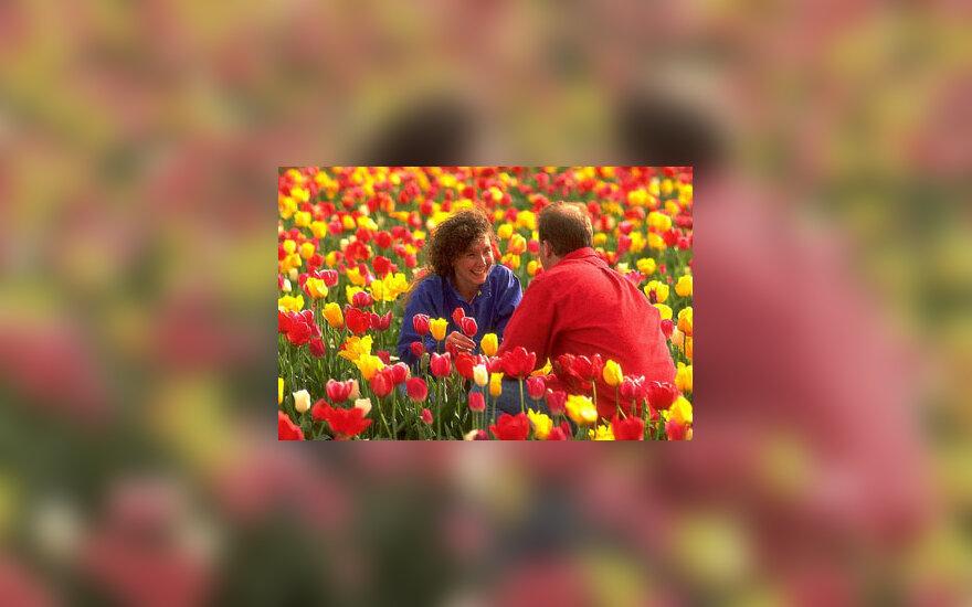 Pavasaris, gėlės, pora, vyras ir moteris
