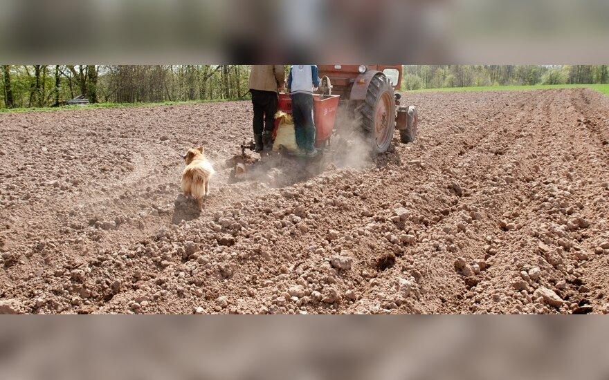 Ūkininkai bijo didžiųjų žemvaldžių ir miestiečių