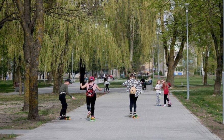 Ekspertai pateikė išvadas dėl medžių genėjimo Kėdainių Vytauto parke