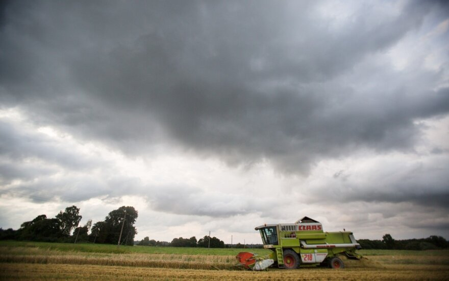 Wet weather hampers harvesting of cereal crops in Lithuania