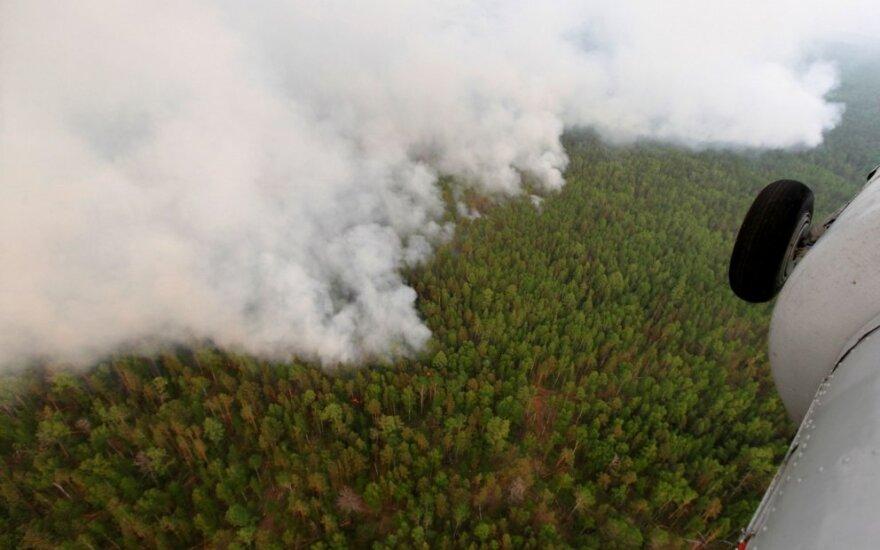 Miškų gaisrai Sibire