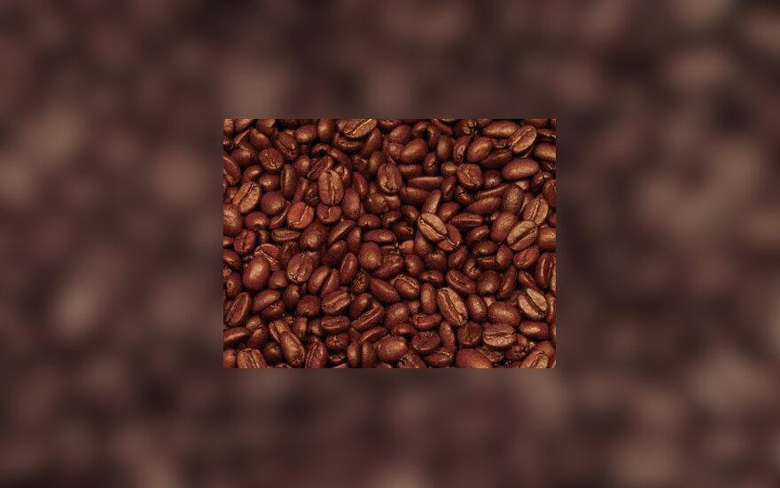 Kavos pupelės, kava