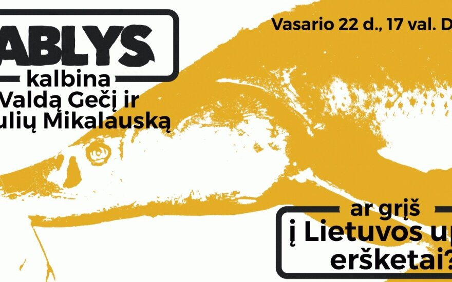 KABLYS kalbina: ar grįš į Lietuvos upes eršketai?